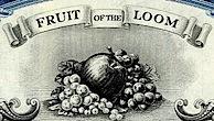 fruitoftheloomvig.jpg