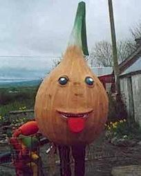onion2pp2.jpg